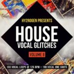 HY2RGEN House Vocal Glitches 8