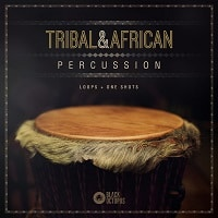 Black Octopus Sound Tribal And African Percussion Artwork