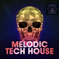 Melodic Tech House Synth Bass Drums Loops FX