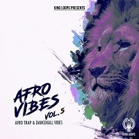 Afro Vibes Volume 5